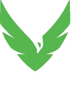Whiplashmag